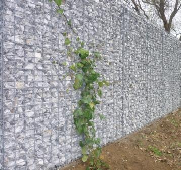 10 Meter Gabionenwand, 20 Zentimeter schmal